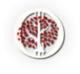 L'avatar di asoiafinverno